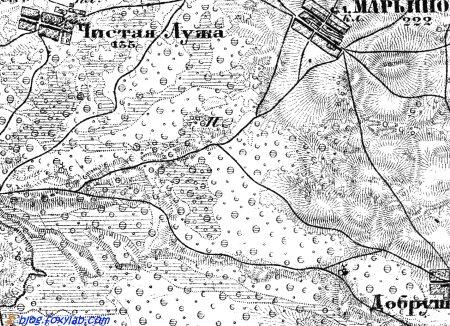карта Шуберта Гомель Добруш
