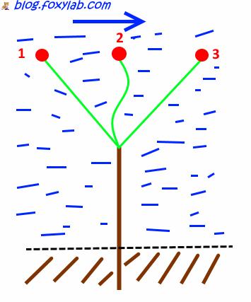 рыбалка в проводку
