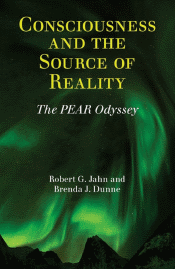 Consciousness and the Source of Reality